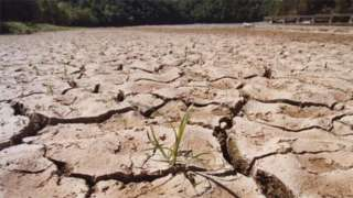 Dried lake bed, US (Image: AP)