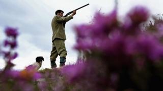 A gamekeeper on moorland in Scotland