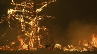Bilpin fire, NSW