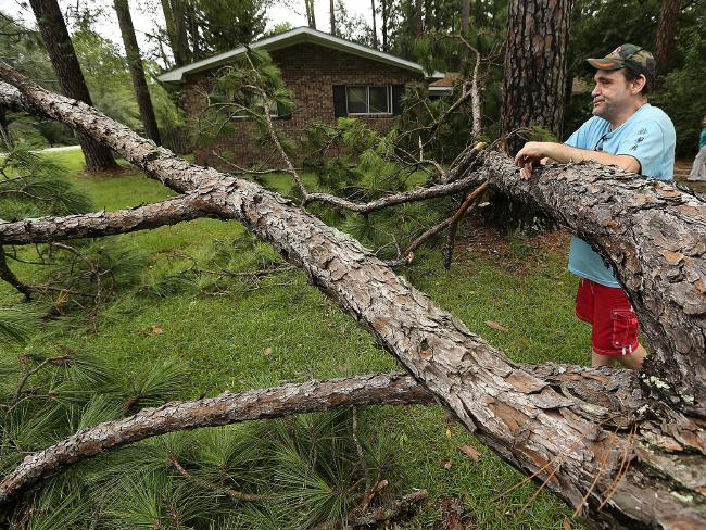 Chris Boland, whose home just missed a direct hit from a fallen pine tree, looks over the aftermath of Tropical Storm Hermine as he waits for power to be restored, in Valdosta in Valdosta. Georgia. Picture: AP