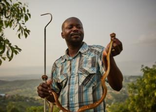 Francois Nsingi, a technician at the Kinshasa Centre of Anti-Venom