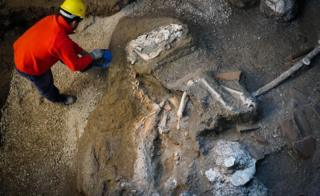 The horse was found with remnants of a saddle and a harness with bronze trimmings