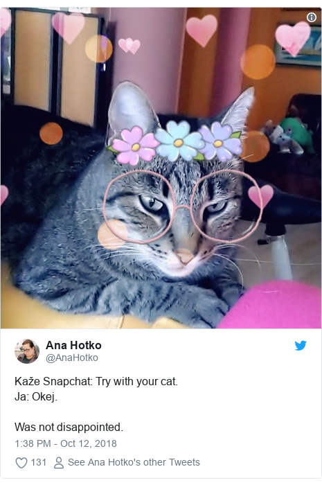 Twitter post by @AnaHotko: Kaže Snapchat  Try with your cat.Ja  Okej.Was not disappointed.