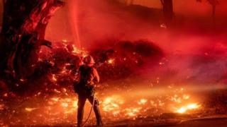 A firefighter douses flames from a backfire during the Maria fire in Santa Paula, California